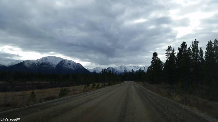 pvt-canada_lilys-road_annie-lake-road