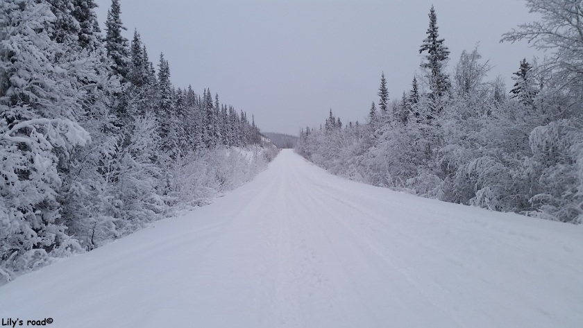 pvt-canada_lilys-road_new-dome-road
