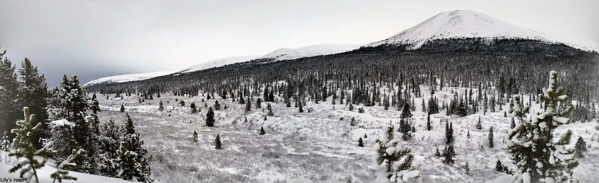 pvt-canada_lilys-road_neige