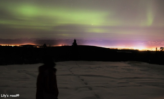 lilys-road_pvt-canada_yukon_aurore-boreale