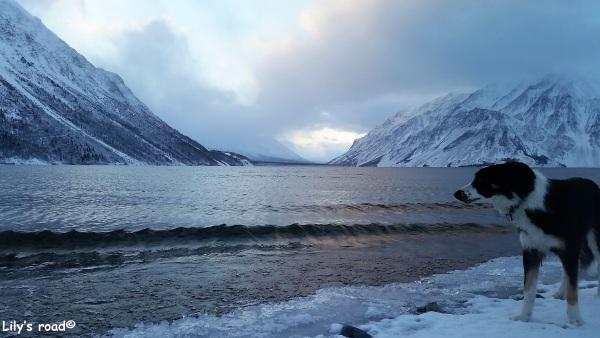 pvt-canada_lilys-road_kathleen-lake_2