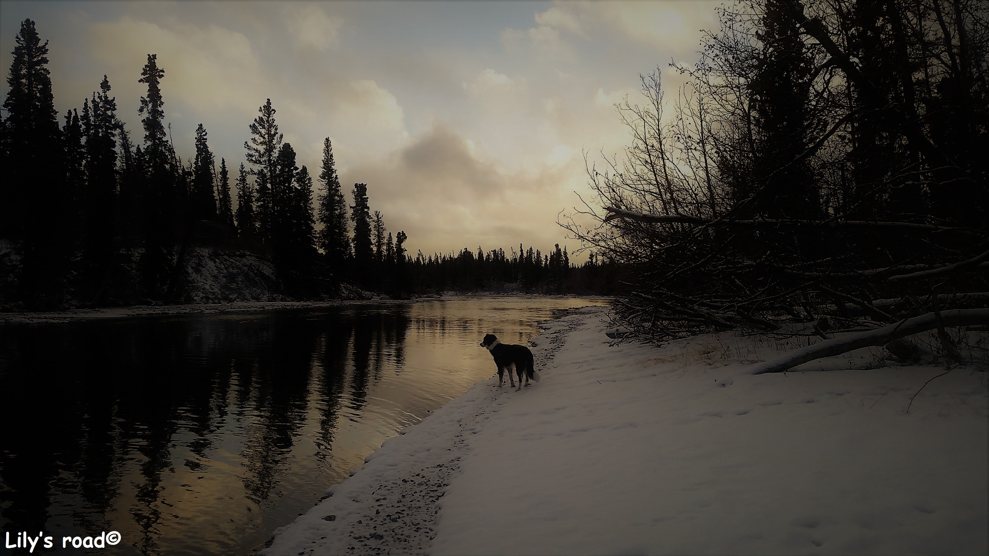 pvt-canada_lilys-road_kathleen-river