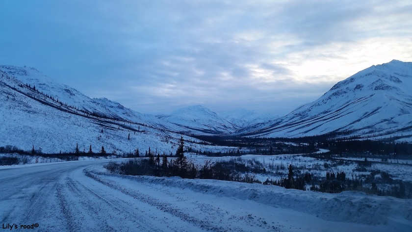 Lily's road_PVT Canada_Dempster Highway en hiver