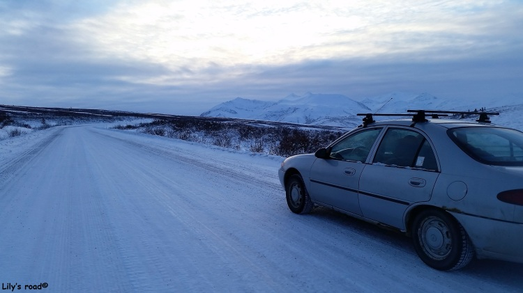 Lily's road_PVT Canada_Dempster Highway