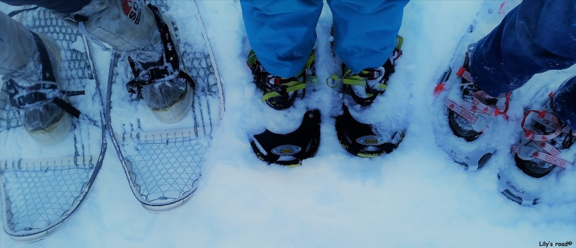 Lily's road_PVT Canada_Tombstone_Snowshoes_1