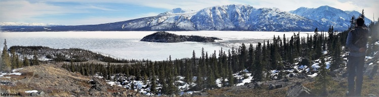 PVT Canada_Lily's road_Kluane