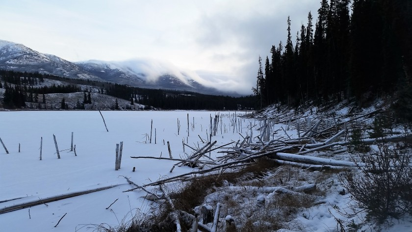 Lily's road_PVT Canada_Hidden Lakes_1