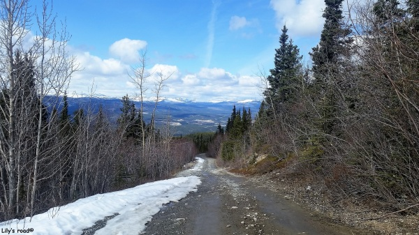 PVT Canada_Lily's road_Grey Mountain Road_Avril 17-Summit's day