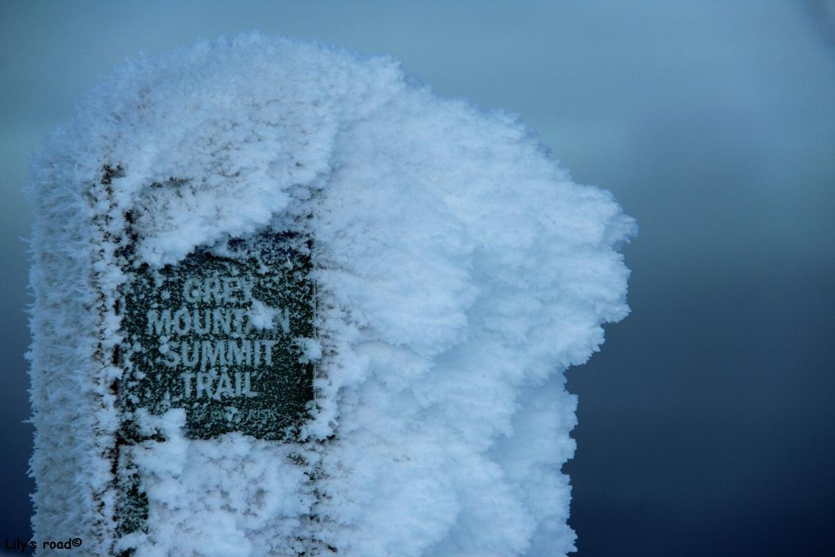 Grey Mountain Summit en hiver : un échec..., trois fois plutôt qu'une !