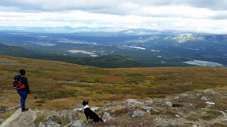 Lily's road_Yukon_Hazel