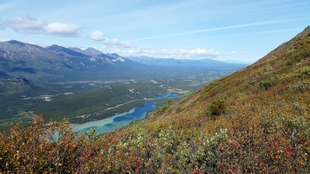 PVT Canada_Lily's road_Caribou Mountain (1)