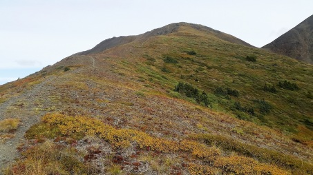 PVT Canada_Lily's road_Caribou Mountain (4)