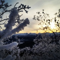 Yukon | 5 activités hivernales à faire à Whitehorse