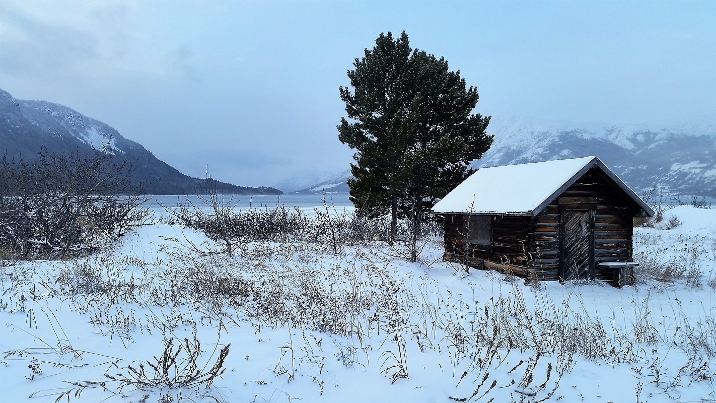 Lily's road_Carcross