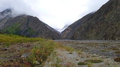Pendant la marche d'approche, le long du ruisseau Columbia. ©Kelly Tabuteau