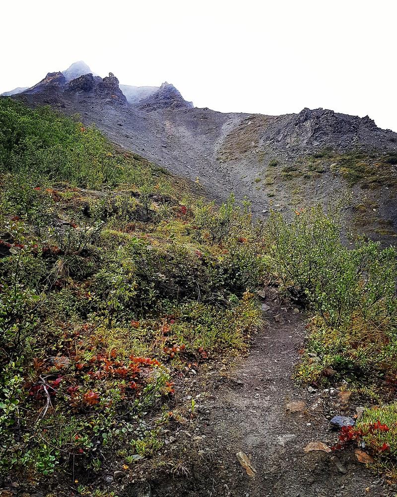 Observation Mountain (4)