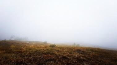 La tête dans le nuage, nous ne voyons plus rien et perdons la trace. ©Kelly Tabuteau