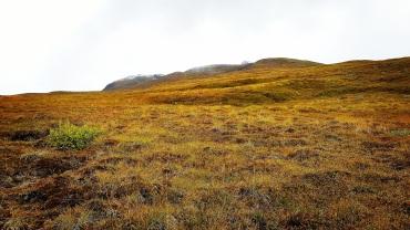 Enfin sur le plateau. ©Kelly Tabuteau