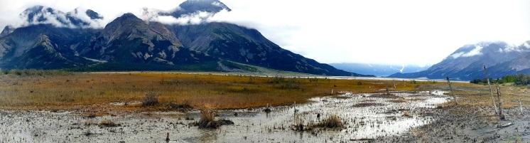 Une des zones marécageuses. ©Kelly Tabuteau