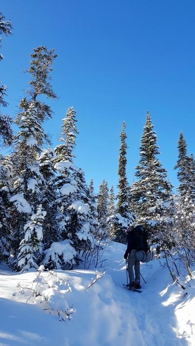 Yukon_Fish Lake_Camping_Hiver (1)