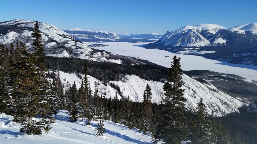 Randonnée Sam McGee au Canada, dans les environs de Carcross.